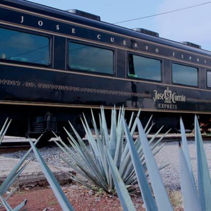 boletos, premium plus, paisaje agavero, tren tequila express, tequila, jose cuervo.